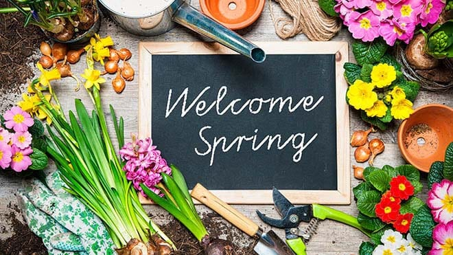Refresh your home for spring